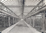 Interior of Anna Dean Farm Greenhouse